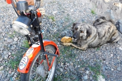 16 Psy v Arménsku